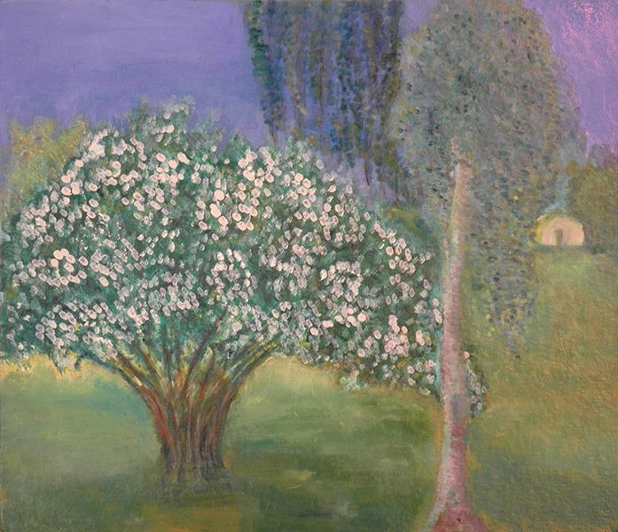 158-2 Jasmijnboom, 2010